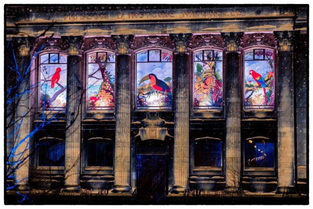 Projection sur le museum d'histoire naturelle