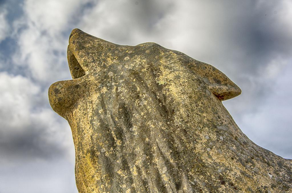Statue de loup au Cloître