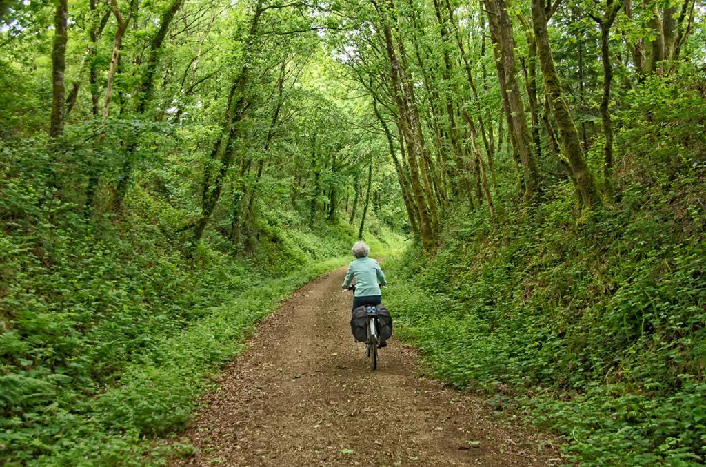 Le chemin vert
